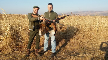 5 stars - Hunting Expedition in Romania !
