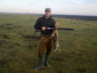 Rabbits hunting in Romania