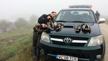 Ducks hunting in Romania